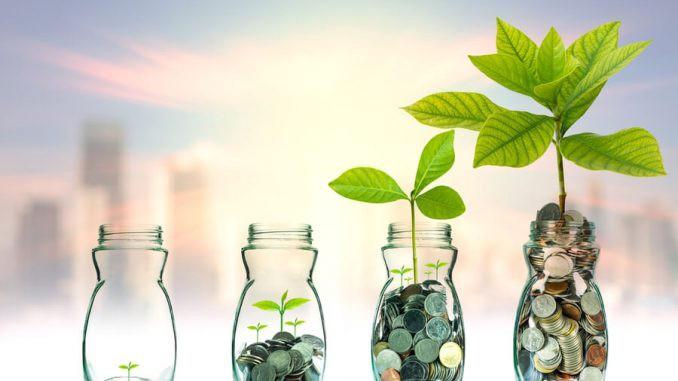 Rafael Chapa: La Libertad Financiera, Iniciar Su Construcción En Tiempos De Oportunidad